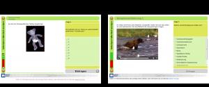 Softwarepraktikum: Ergebnis der Portierung von Flash ins Google Web Toolkit